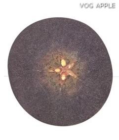 Test almidon fruta pepita tipo Lainburg estado 01