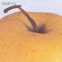 Pedunculo roto en manzana