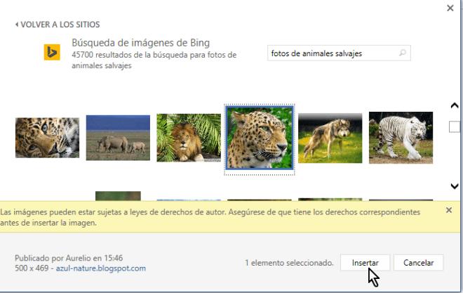 Botón para insertar en Microsoft Word la imagen web seleccionada