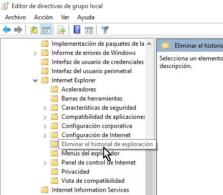 Seleccionando la carpeta Eliminar el historial de exploración en cómo deshabilitar el botón Eliminar el historial de Internet Explorer