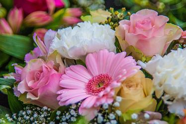Las Mejores Páginas Web Para Ordenar Flores Online Tecnicomo