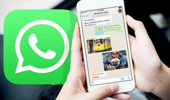 WhatsApp: disponibile la novità per cui non devi perdere tempo