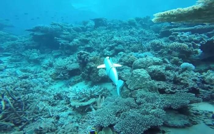Creato un pesce robotico per condurre ricerche sui fondali marini