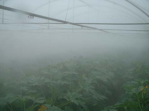 Misting Cooling Fogging Humidification Systems