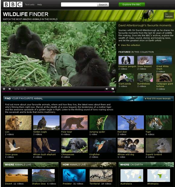 Vídeos de animais selvagens online