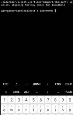 Configurazione Kali su UserLand