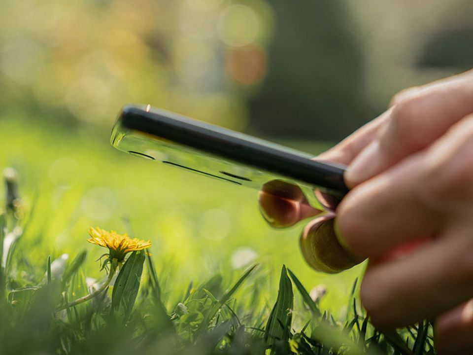 Consejos de fotografía con smartphone