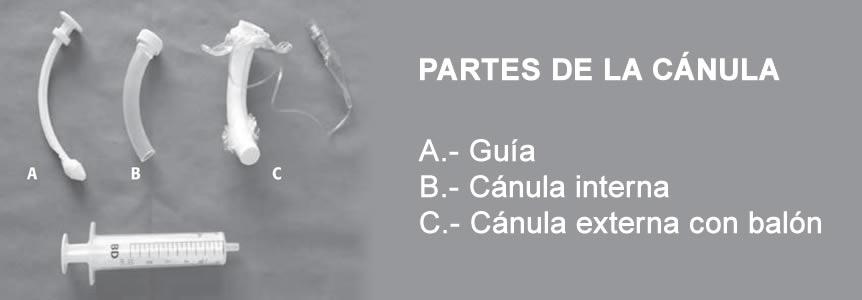 04120219 Partes que componen la cánula de traqueostomía