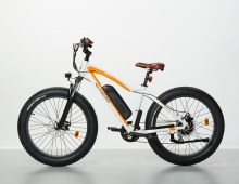 2018 RadRover Electric Fat Bike Rental