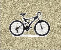 Mountain Bike Rental