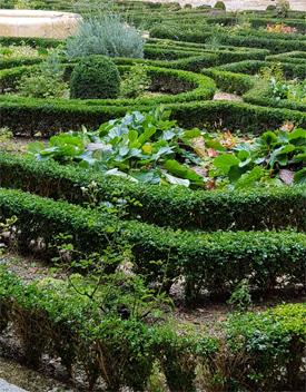 curso de parques y jardines publicos online