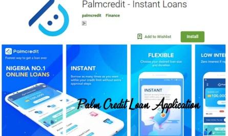 Palm Credit Loan Application