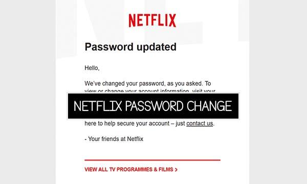 Netflix Password Change