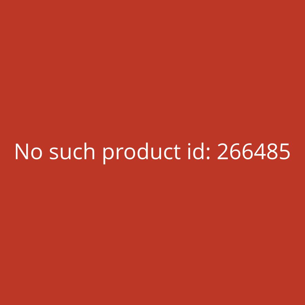 Apple Hülle Leder für iPhone 11Pro schwarz