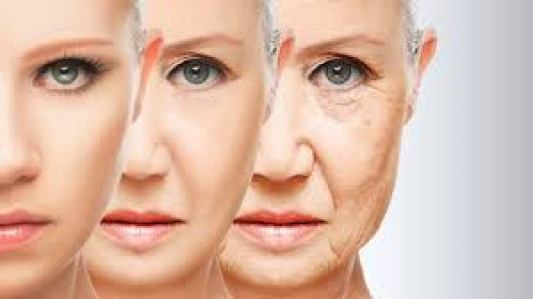 menopausa envelhecimento  Entenda o porquê dos cuidados com a menopausa e os riscos caso na seja tratada no tempo certo image