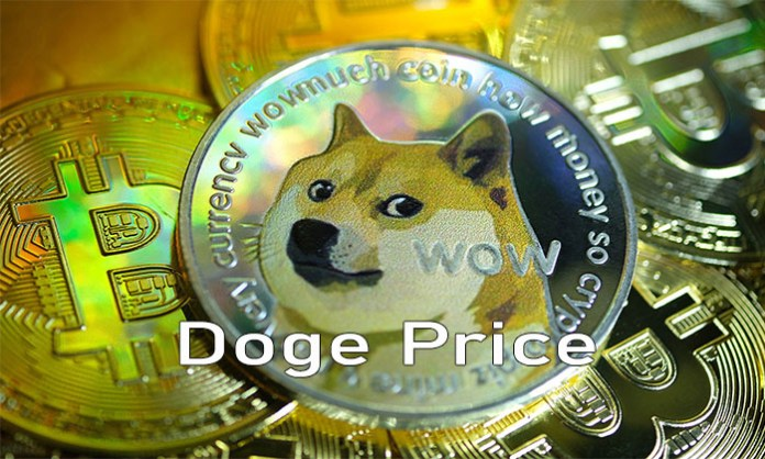 Doge Price - Everything You Need to Know About Dogecoin Current Price and Prediction