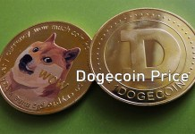 Dogecoin Price - All About the Dogecoin Current Price 2021