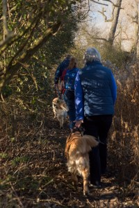 Walking along a narrow track through woodland, in front is Phil with quizzie, then M with Teddy on harness, then Helen with Maisie