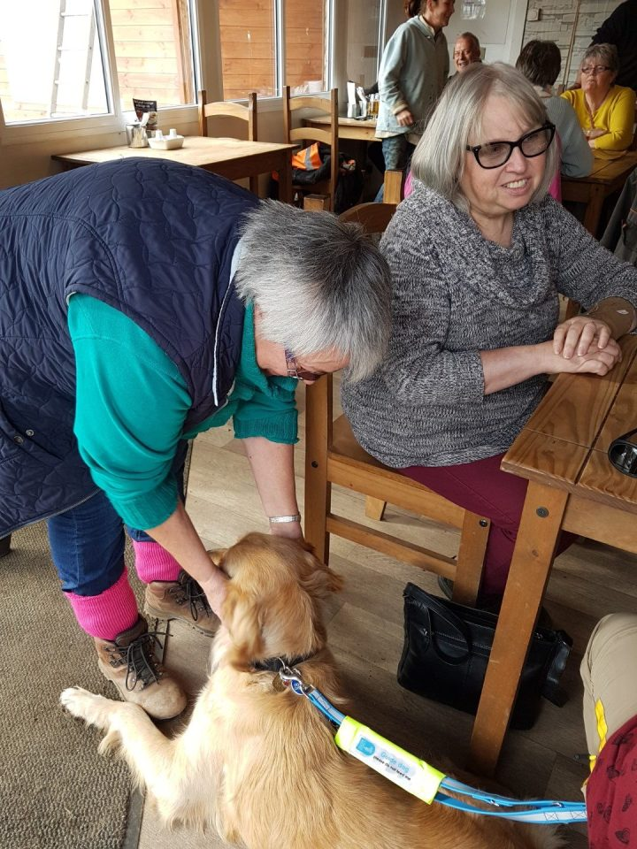 Teddy lying on wooden floor beside cafe table. Leslie is bending down making a fuss of him and Liz is sitting on the chair beside them