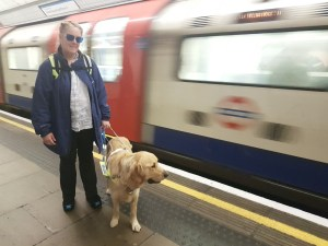 Teddy in harness standing beside Mummy on the platform as a tube train whizzes away in a blur