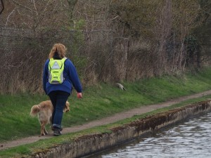 Mummy wearing her hi viz yellow backpack with Teddy guiding her along a narrow towpath beside the canal