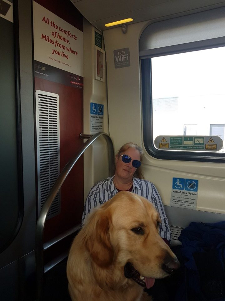 """Mummy sitting on the floor of the train in the wheelchair bay with Teddy sitting in front of her. Above is a sign proclaiming """"All the comforts of home..."""""""