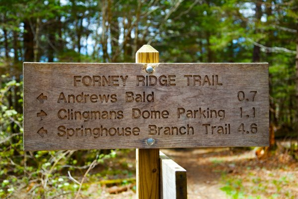 Andrews Bald/Fortney Ridge Trail