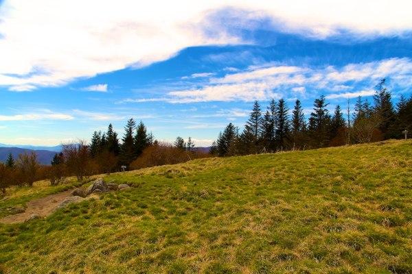 Andrews Bald/Fortney Ridge Trail