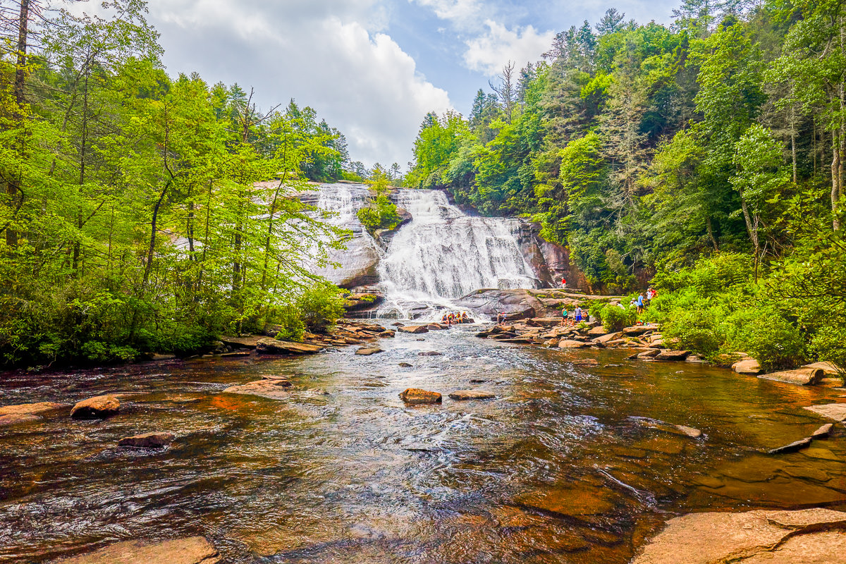 Dupont State Forest
