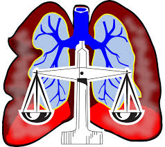 icon for judiciary