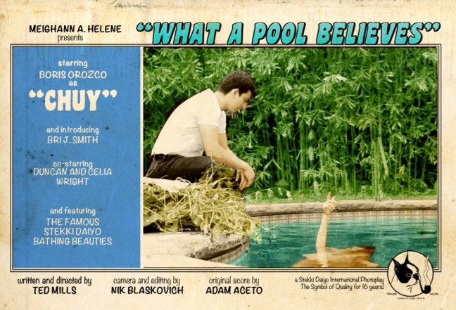 whatapool_poster_color