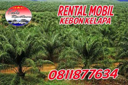 RENTAL MOBIL KEBON KELAPA NO.1