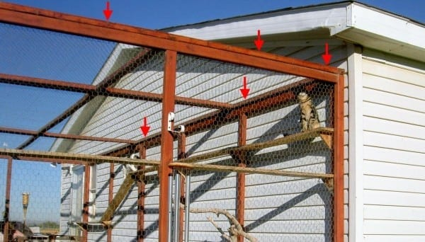 How To build an outdoor cat enclosure or catio