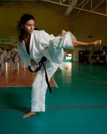 Girl Karate Martial Arts