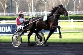 cheval trot