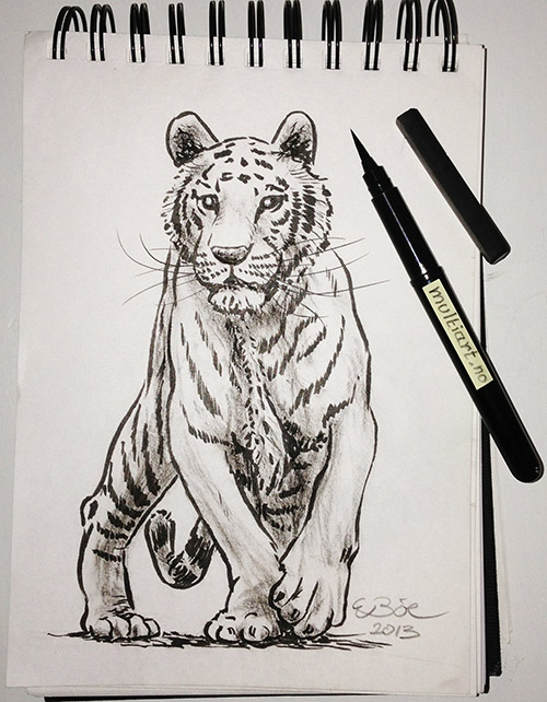 Tiger. Sketch with ink and charcoal