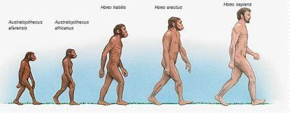Les fondamentaux et sa posture