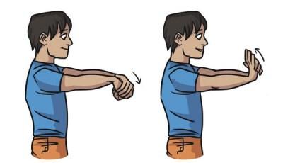 bras d'arc - Comment renforcer mon bras d'arc