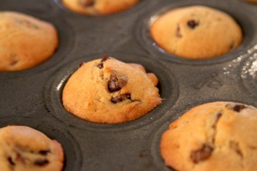Vegan Cranberry Chocolate Mini Muffins