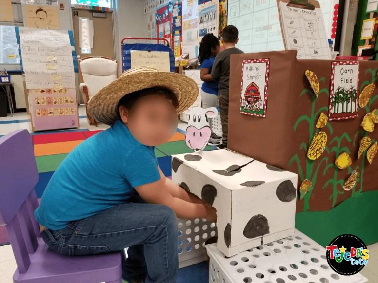 Milking cows in our classroom farm! #tejedastots