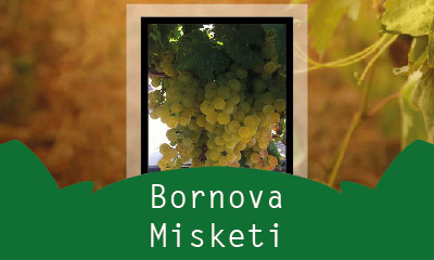 Bornova Misketi