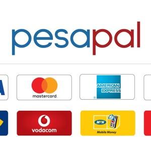 E-Commerce in Kenya – A Presentation of Agosta Liko, CEO of PesaPal