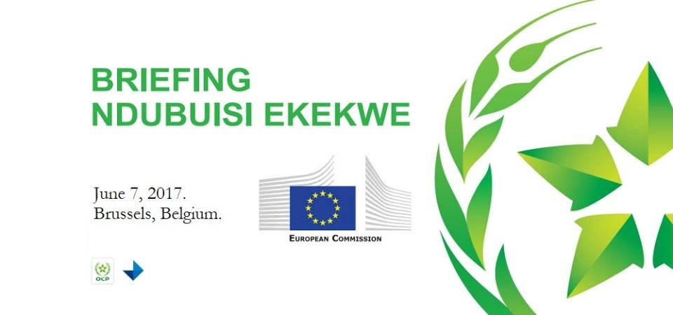 Ndubuisi Ekekwe To Speak In The European Commission, June 7th 2017