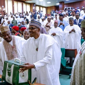 Nigeria's 2020 Budget – From The Lens of a Democratic Spectacle