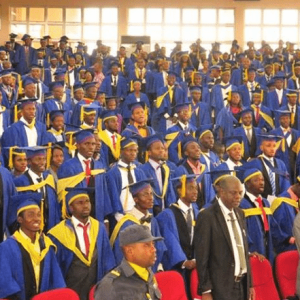 Battling Nigerian Graduate's Unemployment from the Foundation