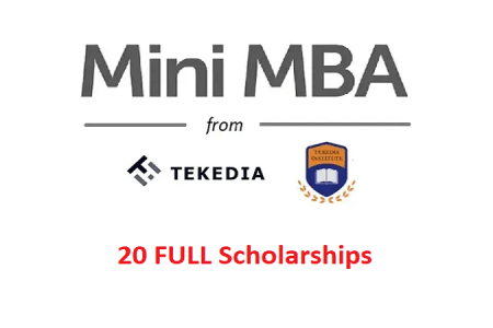 We Received Full Scholarship Funding for 20 Founders for Tekedia Mini-MBA