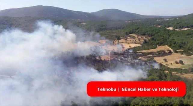 İzmir Urla'da Orman Yangını Çıktı