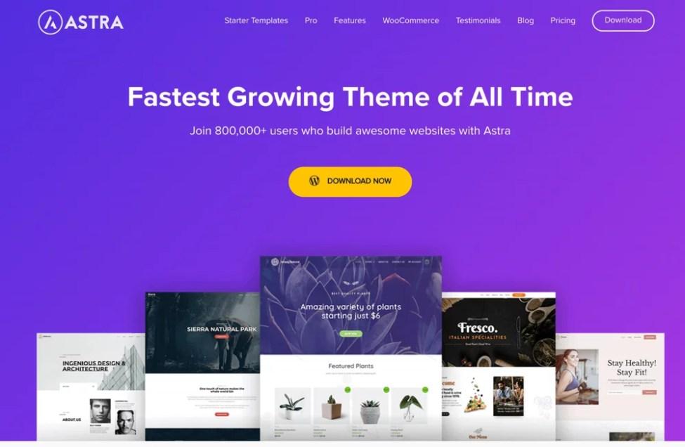 En İyi Ücretsiz Hızlı WordPress Temaları