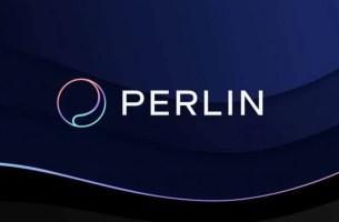 Perl Coin Geleceği