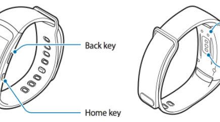 Análisis de la pulsera Samsung Gear Fit 2 a fondo y